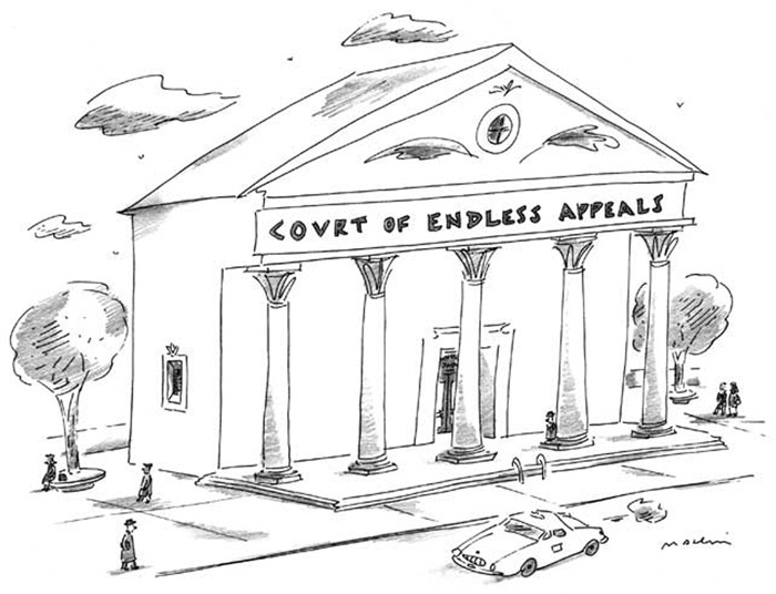 pioneer courthouse galleries cartoons